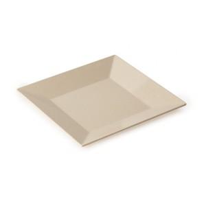 "10"" Square Plate"