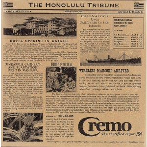 "12"" x 12"" Food-Safe Hawaii Newsprint Liner, Brown, 1000 pieces./cs."